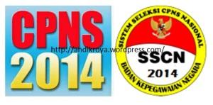 007-CPNS 2014, Info resmi dari BKN